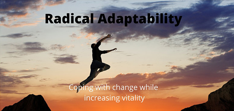 Radical Adaptability: Coping with Change while Increasing Vitality msba